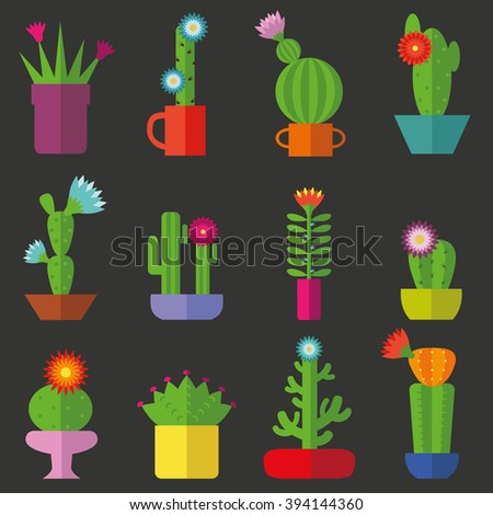 Cactus set  in flat style.Vector collection of blooming succulents.Modern flat style. Green plant icons,desert nature,floral exotic,tropical flower,Home cactus garden,wild botany illustration.Simple - stock vector