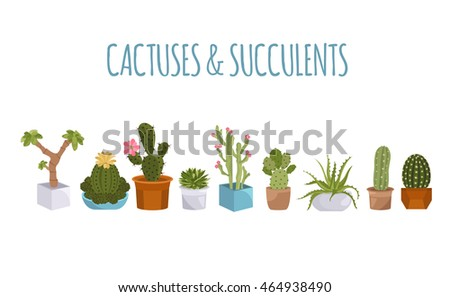 Cactuses and succulents icon set. Houseplants. Vector illustration