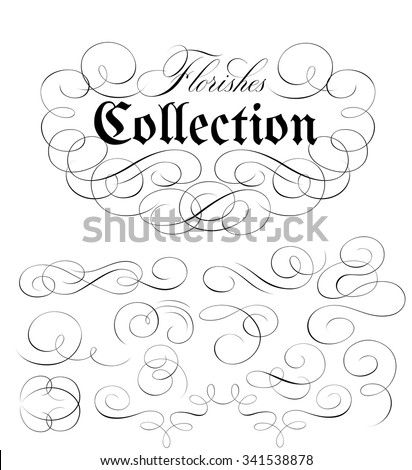 Calligraphic Florishes Collection - stock vector