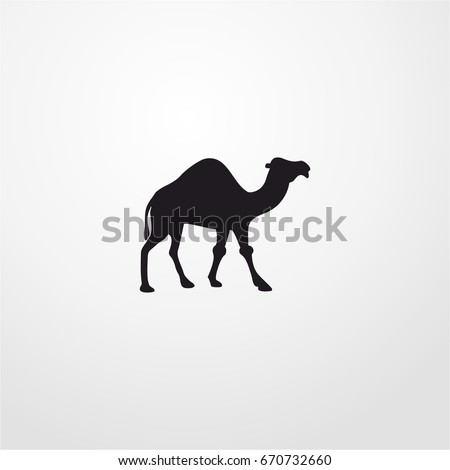 camel icon. vector sign symbol on white background