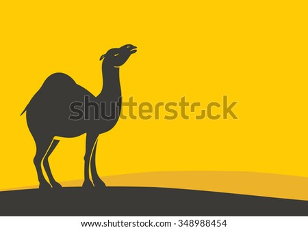 Camel in the desert at sunset. - stock vector