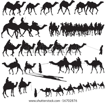 Camel Silhouettes - stock vector
