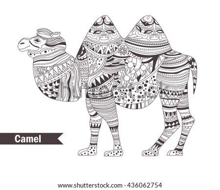 Camel style adult