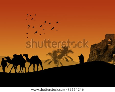 Camels in Sahara with bedouin and shepherd, on orange sunset - stock vector