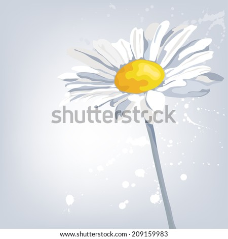 Camomile flower. Summer background. Card for Mothers Day.