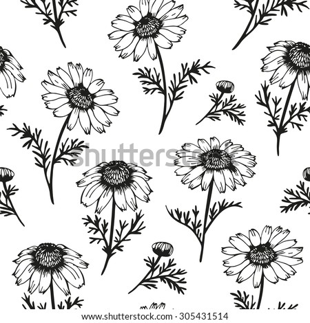 Camomile seamless background