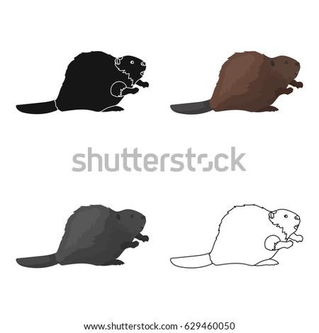 Canadian Beaver Canada Single Icon Cartoon Stock Vector 629460050