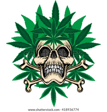 cannabis leaf grunge skull coat of arms - stock vector