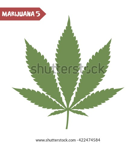 Cannabis leaf. Marijuana legalization. Medical cannabis leaf isolated on white. Graphic design element for web pages and articles, prints, t-shirt decoration. Vector illustration. - stock vector