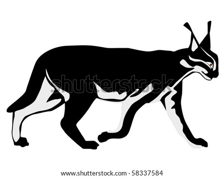 caracal - stock vector