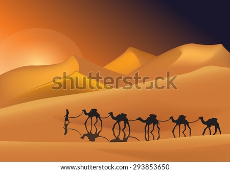 Caravan of camels in the desert at sunset - stock vector