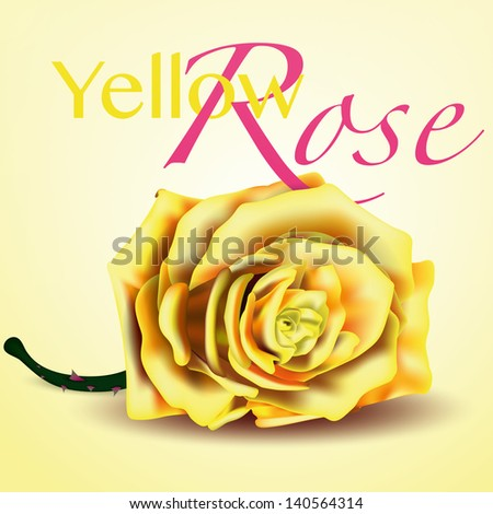 Card with Yellow Vector Rose on Background