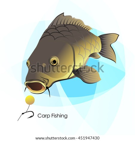 Carp Fishing, fish and lure, vector illustration