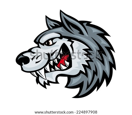 Cartoon angry wolf head isolated on white background. Vector illustration - stock vector