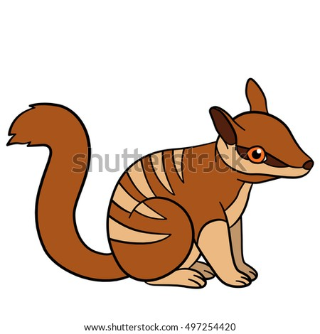 stock vector cartoon animals little cute baby numbat sits and smiles 497254420