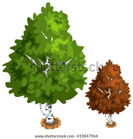 Cartoon birch tree. Vector illustration. - stock vector