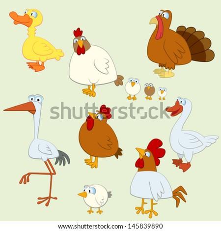 Cartoon Bird Set of  Domestic Birds - stock vector