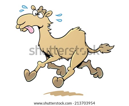 Cartoon Camel Running - stock vector