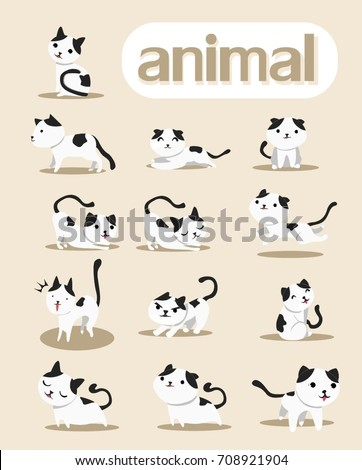 cat poses stock images royaltyfree images  vectors