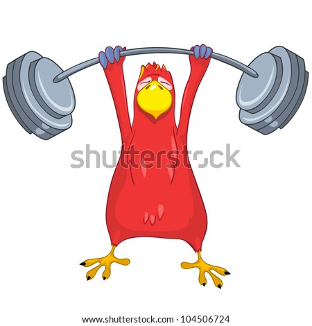 Cartoon Character Funny Parrot Isolated on White Background. Gym. Vector EPS 10. - stock vector