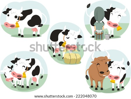Cartoon cow action set, with cute lovely heifer in five different situations like Standing dairy cow, Eating cow, Milk cow, cow and bull and cow with calf bull buffalo vector illustration. - stock vector