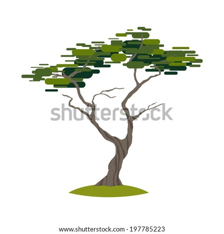 cartoon crooked cypress tree on transparent stock vector 2018 rh shutterstock com Louisiana Bald Cypress Tree Drawing Cypress Tree Clip Art