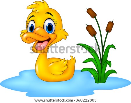 Duck Pond Stock Images Royalty Free Images Amp Vectors