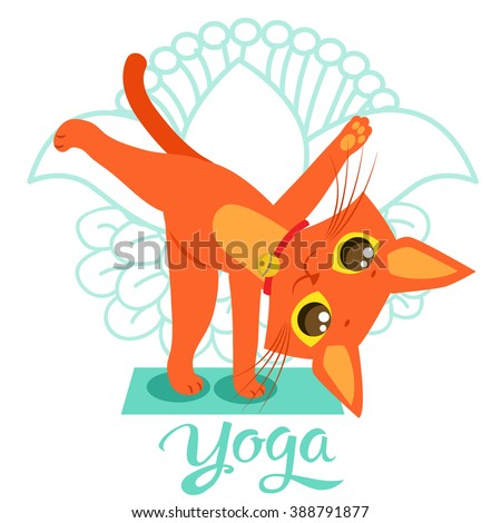yoga cat stock photos royaltyfree images  vectors