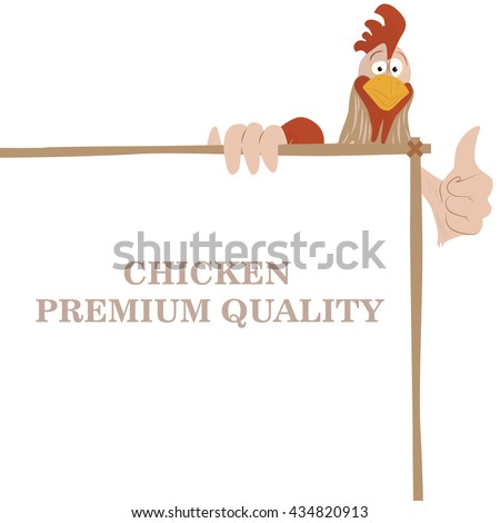 Cartoon funny rooster wit chicken premium quality banner, showing thump up