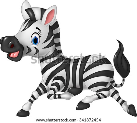 Cartoon funny zebra posing isolated on white background  - stock vector