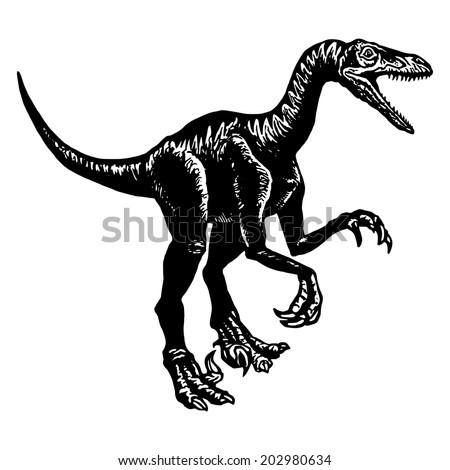cartoon, hand drawn, vector, sketch, illustration of Velociraptor - stock vector