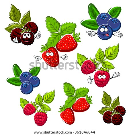 Cartoon happy red strawberry, raspberry, blueberry and blackberry fruits with green leaves. Bright berries for healthy dessert, recipe book or agriculture design - stock vector