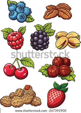 Cartoon nuts and berries. Vector clip art illustration with simple gradients. Each on a separate layer. - stock vector