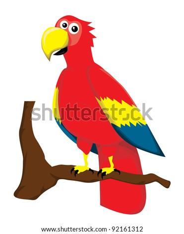 Cartoon parrot - stock vector