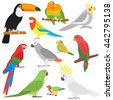 cartoon parrots set and parrots ...
