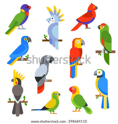 Cartoon parrots set and parrots wild animal birds. Tropical parrots feather zoo birds, tropical fauna macaw flying ara. Various cartoon exotic birds set with parrots vector illustration. - stock vector