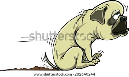 Cartoon pug dog scraping its bum. Isolated on white