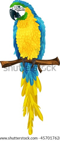 Cartoon vector illustration of blue and yellow parrot ara macaw  isolated on white background - stock vector