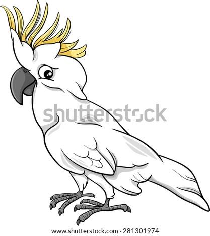 Cartoon Vector Illustration of Funny Cockatoo Parrot Bird - stock vector
