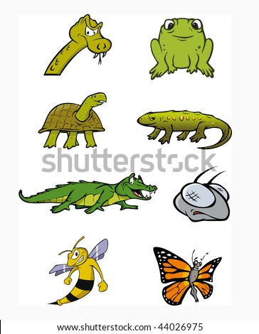 cartoon vector illustration reptile amphibian collection