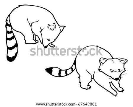 cartoon vector outline illustration of raccoons