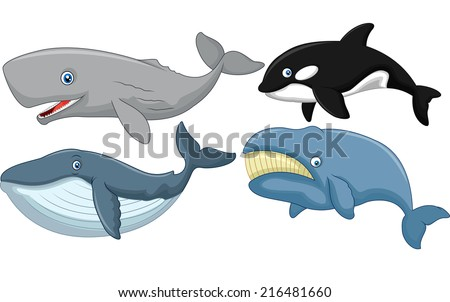 Cartoon whale collection - stock vector
