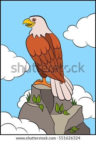 friendly falcon stock images royaltyfree images