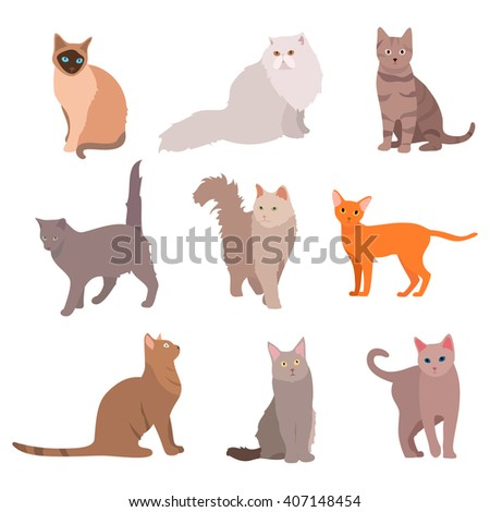 Cat big set. Beautiful cartoon cats isolated on white. Vector eps10 - stock vector