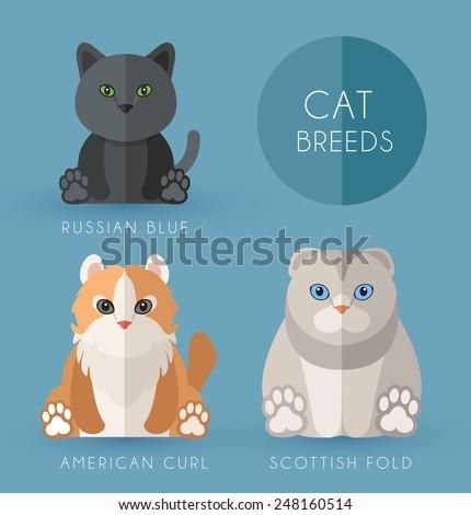 Cat Breeds - stock vector