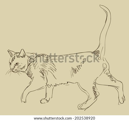 Vector Outline Sketch Cat Standing Stock Vector 276653699 - Shutterstock