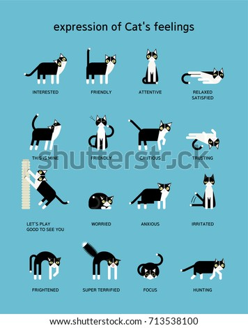 cat language vector illustration flat design