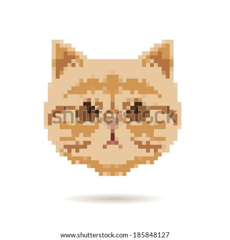 Cat portrait abstract isolated on a white backgrounds, vector illustration
