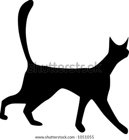 cat walking - stock vector