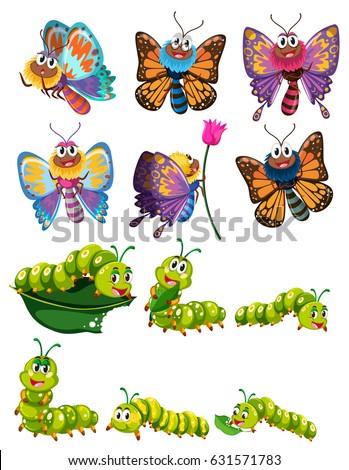 caterpillars butterflies colorful wings illustration stock vector rh shutterstock com Caterpillar Cute Butterfly Clip Art Realistic Caterpillar Clip Art
